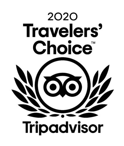 TripAdvisor Travelers' Choice 2020 logo